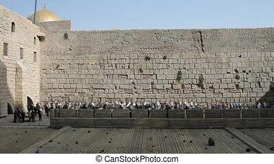 mur, gémir