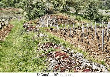 mur, vignoble, pierre, bourgogne