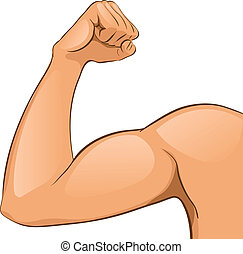 muscles, bras, homme