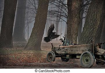 mystique, corneille, halloween, wagon., scène