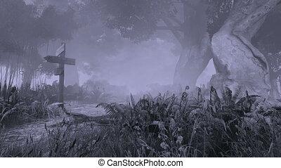 mystique, effrayant, forêt