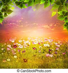 mystique, meadow., soir, naturel, résumé, arrière-plans, conception, ton