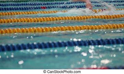 nageur, athlète, natation, brasse, piscine, mâle