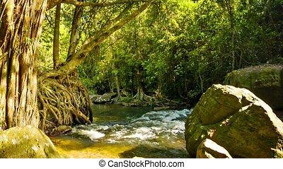 national, park., kulen, cambodge, phnom