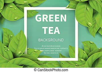 nature, feuilles thé, vecteur, arrière-plan vert