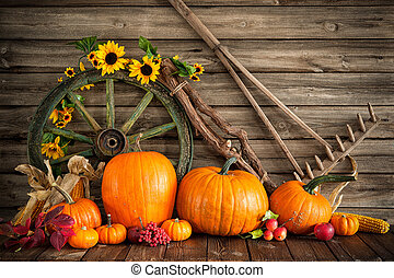 nature morte, potirons, thanksgiving, automnal