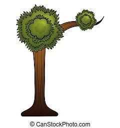 naturel, beatiful, isolé, arbre