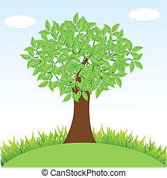 naturel, herbe, arbre