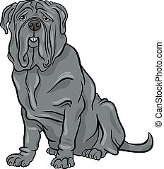 neapolitan, mastiff, dessin animé, illustration, chien
