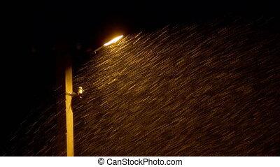 neige, contre, chutes, réverbère, fond, nuit