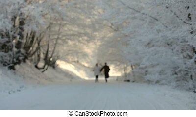 neige, courant, deux personnes
