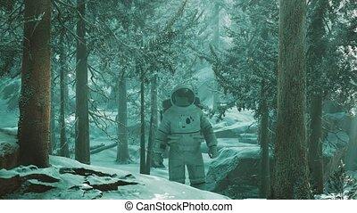 neige, explorer, astronaute, forêt