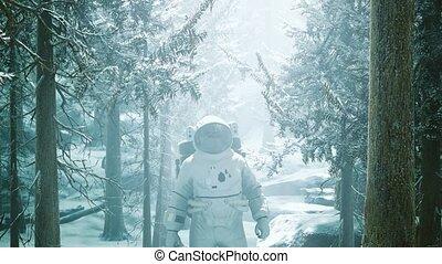neige, forêt, astronaute, explorer