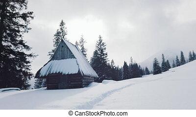neige, montagne, hutte, paysage, hiver, idyllique, bois, couvert