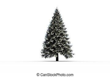 neigeux, arbre sapin, généré digitalement