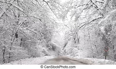 neigeux, hiver, route