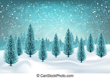 neigeux, paysage hiver
