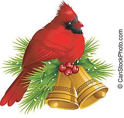 noël, cardinal, oiseau, cloches