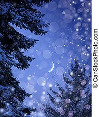 noël, neigeux, nuit, forêt