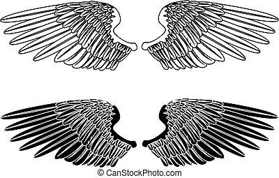 noir, ailes, blanc