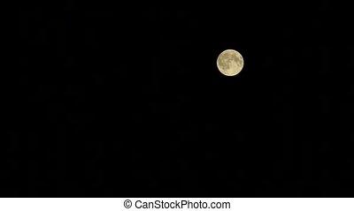 noir, entiers, ciel, lune