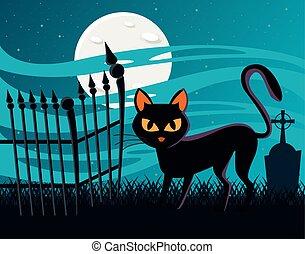 noir, scène halloween, nuit, chat, fullmoon