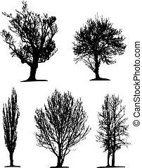noir, silhouettes, arbre