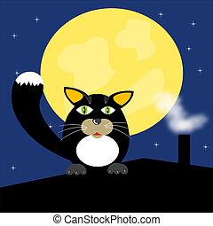 noir, toit, chat