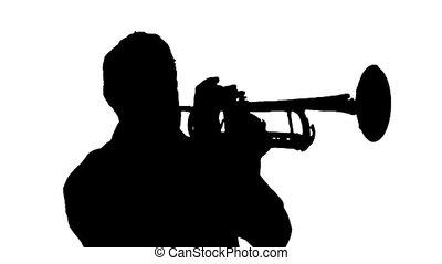 noir, trompette, blanc, coupure, joueur, énergique