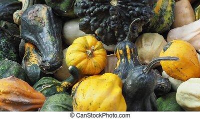 nourriture, citrouille, légumes
