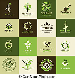 nourriture, ensemble, organique, icônes