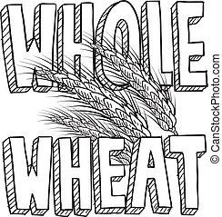 nourriture, entier, croquis, blé