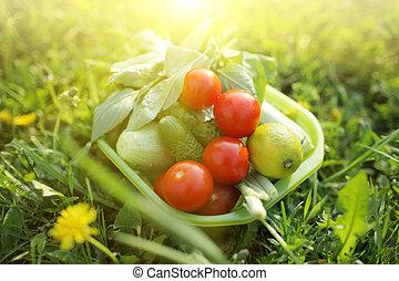 nourriture, organique, dehors