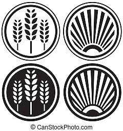 nourriture saine, grain, symboles