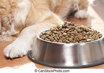 nourriture, sien, chien