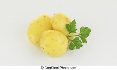nouveau, tubercule, pomme terre