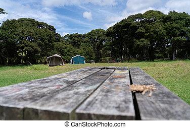 nouvelle zélande, scène, camping