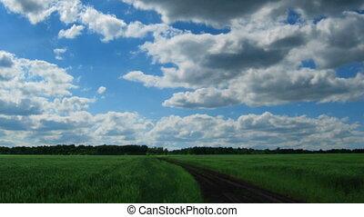 nuages, piste, sur, timelapse, champ, en mouvement, vert, vous