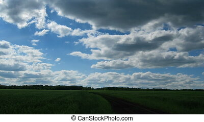 nuages, sur, en mouvement, champ vert