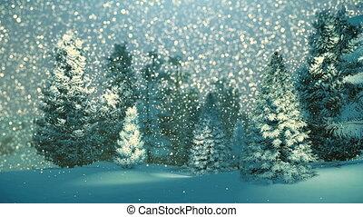 nuit, chute neige, neigeux, forêt, sapin