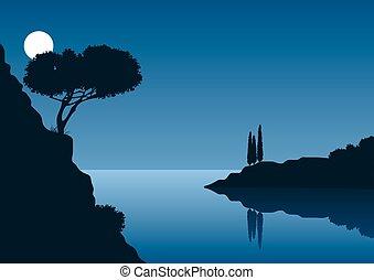 nuit, entiers, paysage, côtier, lune