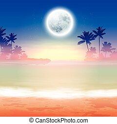nuit, entiers, plage, lune