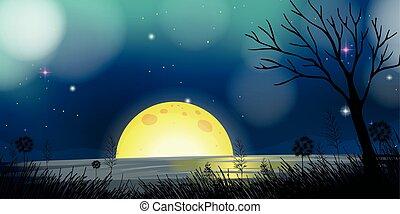 nuit, lune, scène, lac