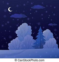 nuit, paysage, forêt, hiver