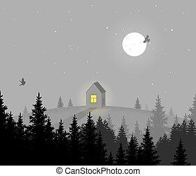 nuit, paysage., maison, solitaire, paysage, eps10., nature, vecteur