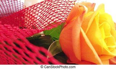nuptial, rose, fin, coup, haut, roses, orange, révéler, bouquet