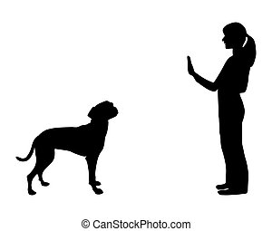 (obedience):, formation, arrêt, commande, chien
