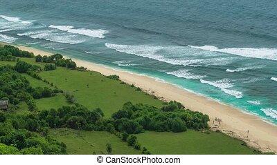 océan, exotique, vagues, rouler, plage, sablonneux