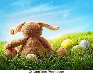 oeufs, paques, coloré, lapin