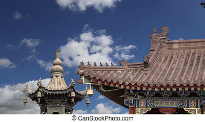 oie, sauvage, pagoda., xian, géant